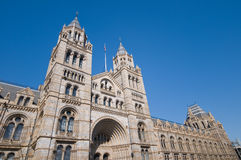 National history museum, London Royalty Free Stock Image