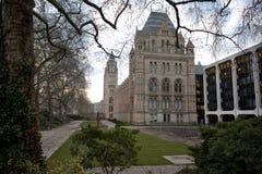 National History Museum. London, United Kingdom - February 16, 2013: National History Museum, side view, no people present Royalty Free Stock Photos