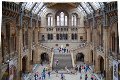 National History Museum, is one of the most favourite museum for families in London. Royalty Free Stock Photography