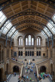 National History Museum, is one of the most favourite museum for families in London. Stock Photos