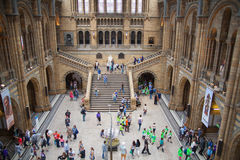 National History Museum, is one of the most favourite museum for families in London. Stock Images