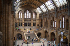 National History Museum, is one of the most favourite museum for families in London. Royalty Free Stock Image