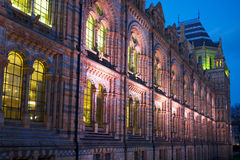 National History Museum: ornament details, London. A lighted facade view of the National History Museum in London, taken in late evening Stock Image