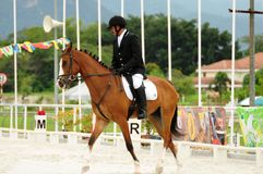 National Horse Show 2010 - Dressage Royalty Free Stock Photography