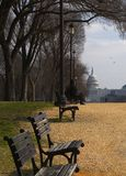 National Mall Royalty Free Stock Image