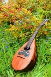 National mandolin. On the green grass with periwinkle  flowers Royalty Free Stock Image