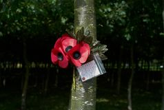 The National Memorial Arboretum Royalty Free Stock Photography