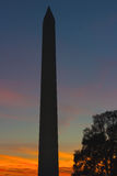 National Monument in Washington DC at sunset. Royalty Free Stock Photography