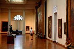 National Museum of Fine Arts in Rio de Janeiro Royalty Free Stock Photos
