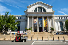 The National Museum of Natural History in Washington D.C. Stock Images