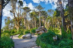 National natural park in Sintra Portugal Stock Photography