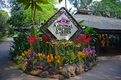 National Orchid Garden in Botanical Gardens royalty free stock image