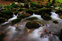 National park Abruzzo Lazio Molise. Autumn landscape in the national park Abruzzo Lazio Molise Italy royalty free stock images
