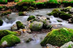 National park Abruzzo Lazio Molise. Autumn landscape in the national park Abruzzo Lazio Molise Italy stock photos