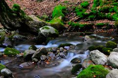 National park Abruzzo Lazio Molise. Autumn landscape in the national park Abruzzo Lazio Molise Italy royalty free stock photography