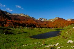 National park Abruzzo Lazio Molise. Autumn landscape in the national park Abruzzo Lazio Molise Italy Royalty Free Stock Photography