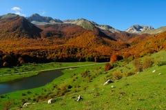 National park Abruzzo Lazio Molise. Autumn landscape in the national park Abruzzo Lazio Molise Italy royalty free stock photo
