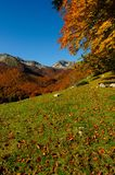 National park Abruzzo Lazio Molise. Autumn landscape in the national park Abruzzo Lazio Molise Italy Royalty Free Stock Photo