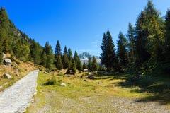National Park of Adamello Brenta - Italy Royalty Free Stock Image