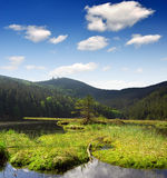 National Park Bavarian Forest - Germany. Small Arber Lake in National Park Bavarian Forest - Germany Stock Photos