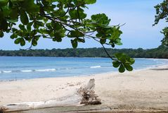 National Park Beach. Peaceful beach in Cahuita national park, Costa Rica stock photos