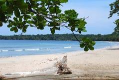 National Park Beach. Peaceful beach in Cahuita national park, Costa Rica Stock Photos