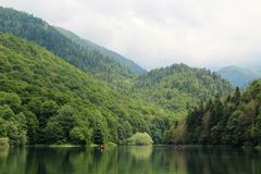 Free National Park Biogradska Gora, Montenegro Stock Photos - 113089043