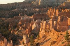 Bryce Canyon, Utah USA. National park stock images