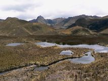 National park Cajas, ecuador Stock Photo