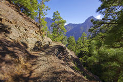 National Park Caldera de Taburiente on the island La Palma, Cana Royalty Free Stock Images