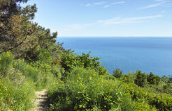 National park of cinque terre Royalty Free Stock Photo