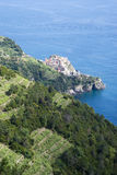 National Park of Cinque Terre Stock Image