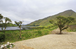 National park Connemara. Royalty Free Stock Photos