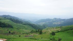 The national park Doi Pha Tang. See view in the morning, THAILAND Royalty Free Stock Images
