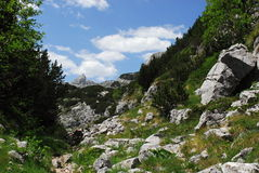 National park Durmitor in Monte Negro. Beautiful national park Durmitor in Monte Negro is full of high mountains and deep valleys Royalty Free Stock Images
