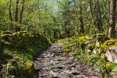 National park Ecrins Stock Photos