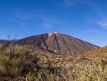 National Park (El Teide - Tenerife - Canary Island). Volcanic landscape - mountain peak - hills - bushes - blue sky - bright daylight Stock Photos