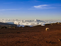 National Park (El Teide - Tenerife - Canary Island). Volcanic landscape - stone - hills - blue sky - above the clouds - bright daylight Royalty Free Stock Image