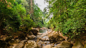 National park of falls of Pliu in Thailand Royalty Free Stock Photography