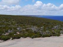 National park Flinders chase Stock Images