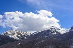 National park Galichica Royalty Free Stock Image