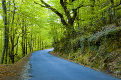 National park of Geres. In the north of Portugal royalty free stock photos