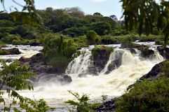 Cachamay, National Park, Guayana city. Venezuela. This is a National park with green grass and natural water fall from Caroni river. Bolivar state, Venezuela royalty free stock images