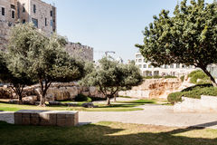 National park on HaTsanhanim street near the walls of the old city in Jerusalem Near the New Gate Royalty Free Stock Images