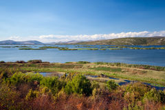 National Park - Hutovo Blato Royalty Free Stock Photo