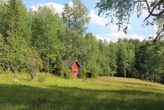 National park Koli, Finland Stock Images