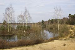 National Park Maasduinen,  Netherlands Royalty Free Stock Photo