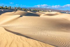 National park of Maspalomas sand dunes. Gran Canaria, Canary isl royalty free stock images