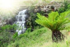 Mpumalanga, South Africa. National park Mpumalanga, South Africa Stock Photo