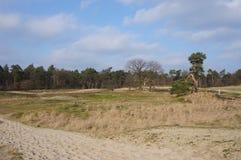 Dutch national park. National park in the Netherlands called the Loonse en Drunense Duinen Stock Photo